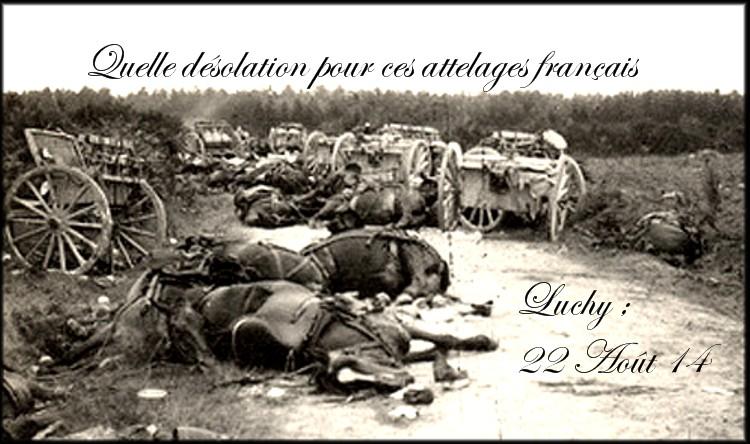 site7 bertrix après la bataille 22 août 1914