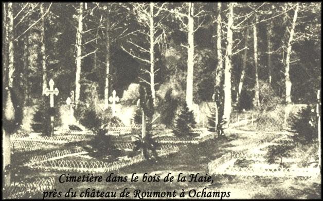 site  sépultures au cimetière de Roumont à Ochamps