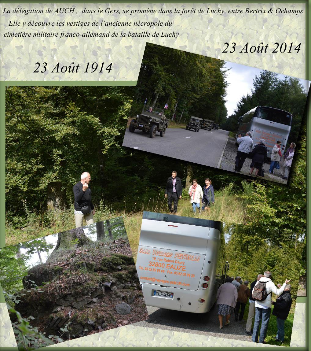 site to befr délégation de Auch dans la forêt