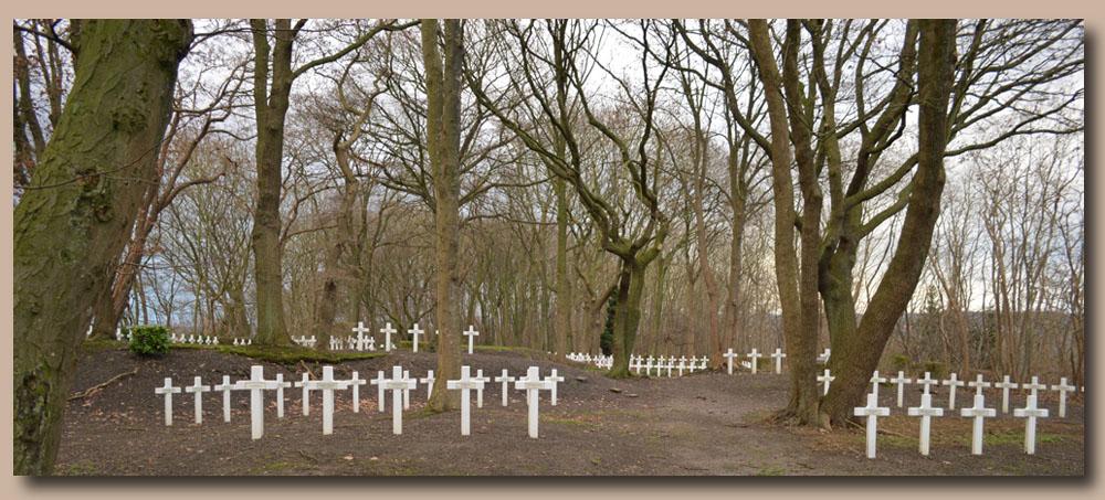 site to auvelais le cimetière en foret