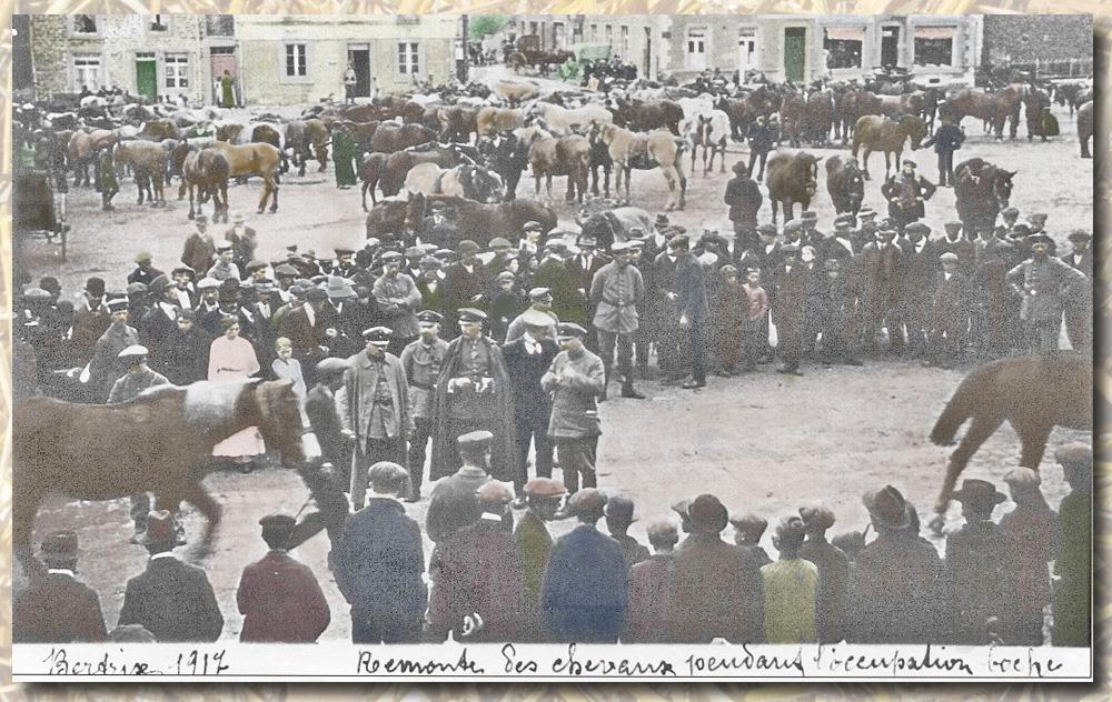 119 SITE 1917 réquisition des chevaux colotmibb_modifié-1 1copie