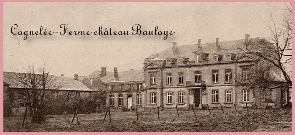 site me be nam cognelée château et ferme bauloye