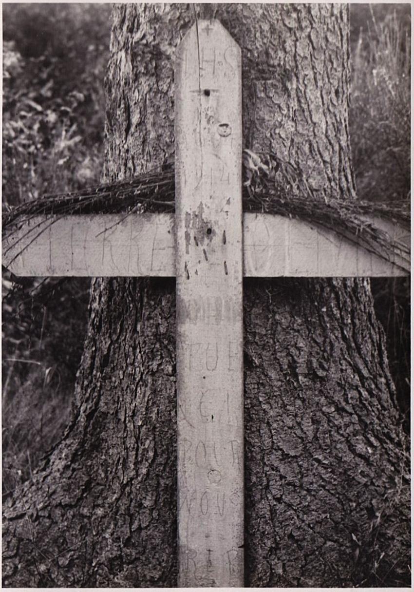 asu croix incrustée dans le sapin